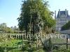 Emilie-Tuileries10.jpg