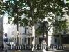 ParisEmilie4.jpg