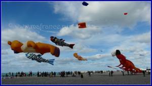 Festival des cerf-volants