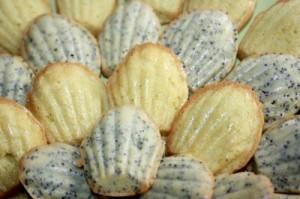 маковое печенье мадлен